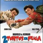2 Tontos En Fuga (2008) Dvdrip Latino [Comedia]