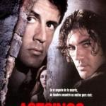 Asesinos (1995) Dvdrip Latino [Accion]