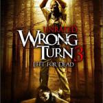 Camino Hacia el Terror 3 (2009) Dvdrip Latino [Terror]