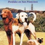 Volviendo a casa 2 (1996) DvDrip Latino [Aventuras]