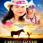 Caballo Salvaje (2009) Dvdrip Latino [Drama]