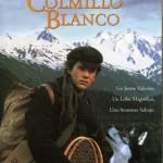 Colmillo Blanco 1 (1991) Dvdrip Latino [Aventura]