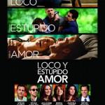 Loco y Estúpido Amor (2011) Dvdrip Latino [Comedia]