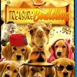 Buddies: Cazadores de Tesoros (2012) Dvdrip Latino [Comedia]