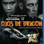 Ojos de Dragon (2012) Dvdrip Latino [Acción]