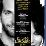 El Lado Luminoso De La Vida (2012) Dvdrip Latino [Romance]
