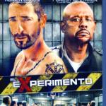 El Experimento (2010) Dvdrip Latino [Thriller]