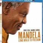 Mandela: Un Largo Camino Hacia la Libertad (2013) Dvdrip Latino [Biográfico]