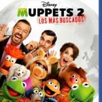 Muppets 2: Los Mas Buscados (2014) Dvdrip Latino [Musical]