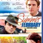 Verano En Febrero (2013) Dvdrip Latino [Romance]