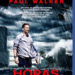 Horas Desesperadas (2013) Dvdrip Latino [Thriller]