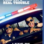 Agentes Del Desorden (2014) Dvdrip Latino [Comedia]