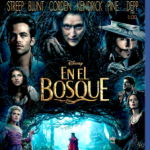 En El Bosque (2014) Dvdrip Latino [Musical]