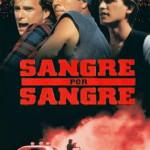 Sangre por sangre (1993) Dvdrip Latino [Thriller]