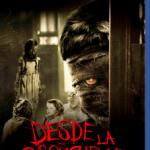 Desde La Oscuridad (2014) Dvdrip Latino [Thriller]