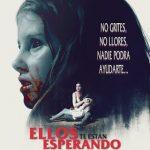 Ellos te Están Esperando (2015) Dvdrip Latino [Terror]