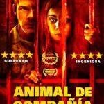Animal de Compañía (2016) Dvdrip Latino [Thriller]