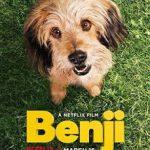 Benji (2018) Dvdrip Latino [Comedia]