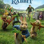 Las Travesuras de Peter Rabbit (2018) Dvdrip Latino [Animación]