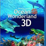 Un Mundo Maravilloso en el Oceano 3D (2003) Dvdrip Latino [Documental]