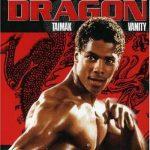 El último dragón (1985) Dvdrip Latino [Acción]