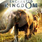Enchanted Kingdom 3D (2013) Dvdrip Latino [Documental]
