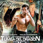 La leyenda de la tumba del dragón (2013) Dvdrip Latino [Acción]