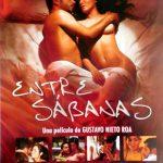 Entre sábanas (2008) Dvdrip Latino [Drama]