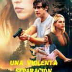 Una Violenta Separacion (2019) Dvdrip Latino [Thriller]