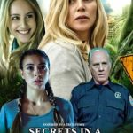 Secrets in a Small Town (2019) Dvdrip Latino [Drama]