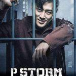 P Storm (2019) Dvdrip Latino [Acción]
